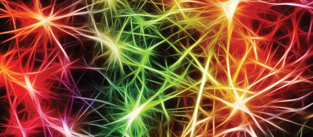 Amplified Brain: i perché della motivazione
