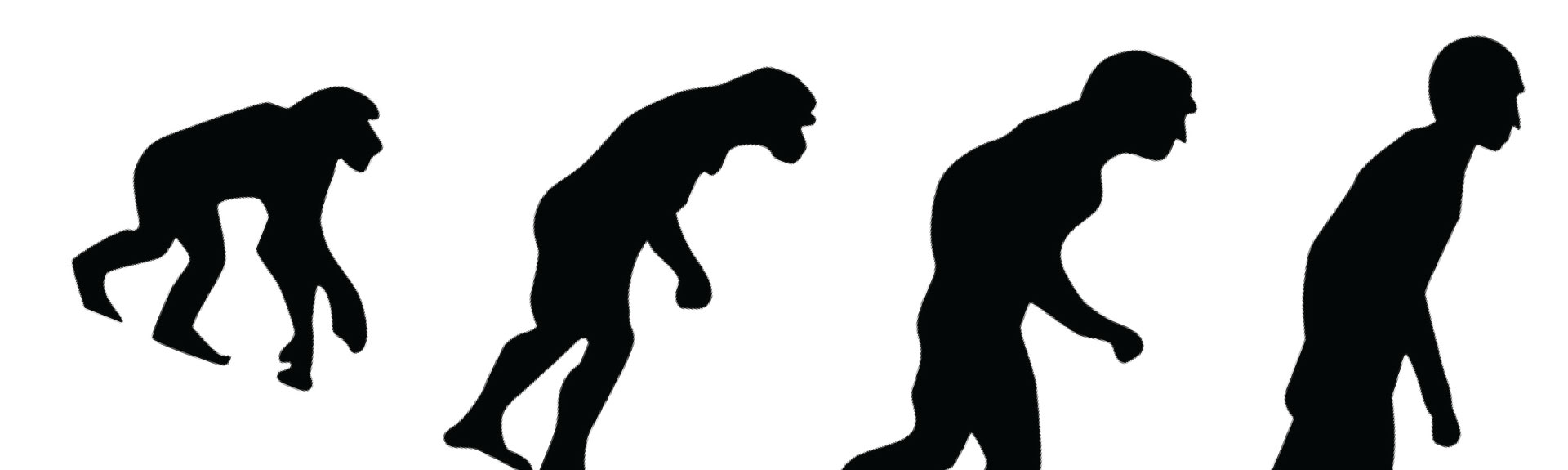 Goodbye, Homo Sapiens?